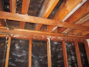 Dry Rot Repair Alameda